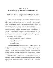 Contabilitate și Analiză economico-financiară - Pagina 3