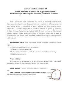 Proliferare și Diferențiere Celulară - Pagina 1