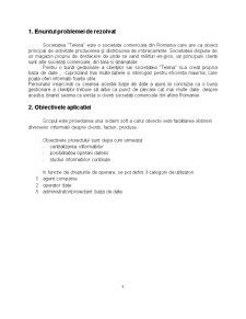 Baze de Date pentru Gestionarea Activității unei Societăți Comerciale - Pagina 3