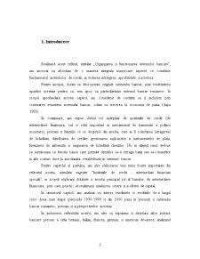 Organizarea si Functionarea Institutiilor de Credit - Pagina 3