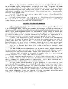 Drept International Public - Curs 1 - Pagina 2