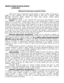 Drept International Public - Curs 5 - Pagina 1