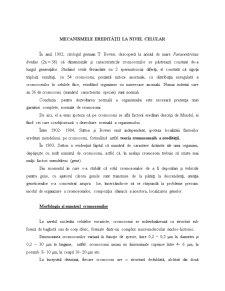Mecanismele Eredității la Nivel Celular - Pagina 1