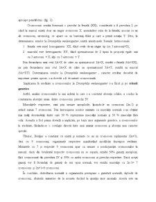 Mecanismele Eredității la Nivel Celular - Pagina 5