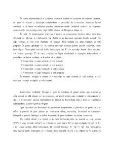 Tezele Teoriei Cromosomale a Eredității - Pagina 3