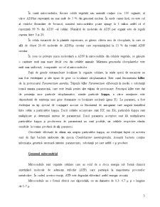 Determinismul Genetic al Sexelor - Pagina 5