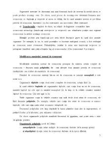 Bazele Moleculare ale Producerii Mutațiilor - Pagina 5