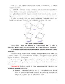 Reglarea Activității Genice - Pagina 3
