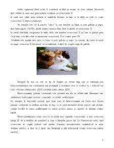 Reglarea Exprimării Genelor la Eucariote - Pagina 4