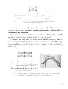 Recombinarea Genetică la Eucariote - Pagina 2