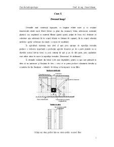 Curs de Hidrogeologie - Pagina 1