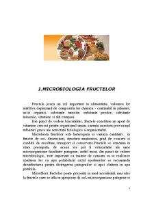 Microbiologia Fructelor și Condimentelor - Microorganisme de Alterare a Fructelor și Condimentelor - Pagina 4