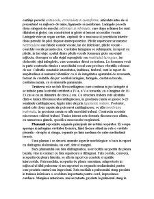 Aparatul Respirator - Pagina 2