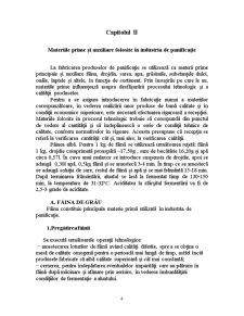 Tehnologia de Fabricatie a Painii - Pagina 4