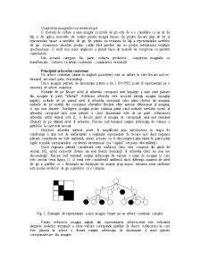 Prelucrarea Numerica a Imaginilor - Pagina 2