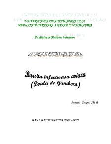 Bursita Infectioasa Aviara - Boala de Gumboro - Pagina 1