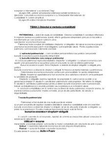 Sinteza Curs Bazele Contabilitatii - Pagina 3