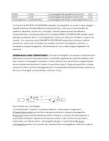 Metode Cromatografice de Analiza - Pagina 2
