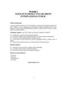 Drept Internațional - Pagina 3