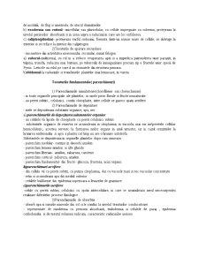 Clasificarea Tesuturilor Vegetale dupa Forma si Grad de Diferentiere Celulara - Pagina 3