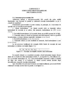 Structura Procesoarelor din Familia Intel - Pagina 1
