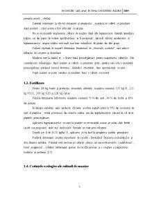 Modificări Care Apar în Urma Conservării Mazării - Pagina 5