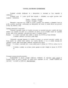 Contul de Profit și Pierdere - Pagina 1
