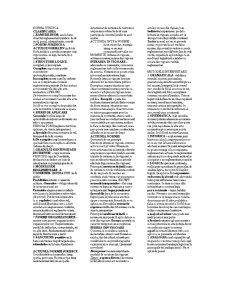 Teoria Generala a Dreptului -2- - Pagina 2