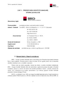 Studiu Monografic la Disciplina Tehnica Operatiunilor Bancare - Banca Romana pentru Dezvoltare - Pagina 3