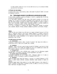 Plan de Afaceri - Ferma de Gaini Ouatoare - Pagina 4