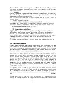 Plan de Afaceri - Ferma de Gaini Ouatoare - Pagina 5