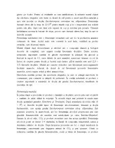 Microbiologia Produselor Alimentare și Industriale - Pagina 2