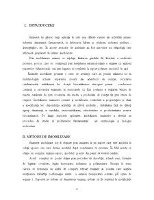 Enzimele Imobilizate în Industria Alimentară - Pagina 4