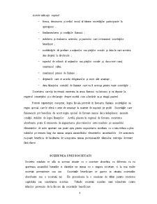 Contabilitatea Fuziunii Societatilor Comerciale - Pagina 5