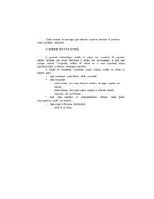 Etapele unui Proces Biotehnologic - Pagina 4