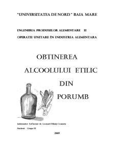 Obtinerea Alcoolului Etilic din Porumb - Pagina 1