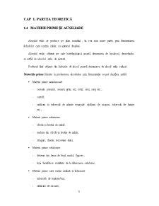 Obtinerea Alcoolului Etilic din Porumb - Pagina 3