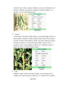 Procesarea Produselor Expandate și Extrudate din Cereale - Pagina 4