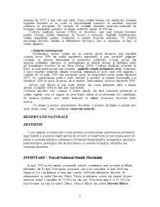 Rezervatia Nationala Muntii Macin - Pagina 4