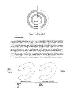 Modele ale Ciclului de Viață al Sistemului Informatic - Pagina 5