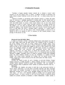 Economia Turismului în România și Ungaria - Pagina 3