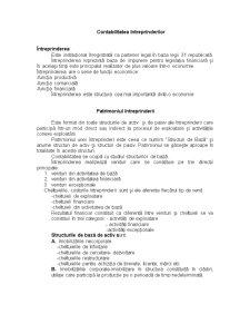 Contabilitatea Întreprinderilor - Pagina 1