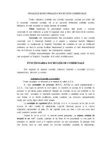 Constituirea Societatilor Comerciale - Pagina 3