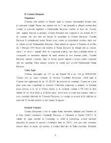 Recrutarea și Selecția Funcționarilor Publici în Cadrul Comisiei Europene - Pagina 4