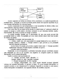 Torenți - Pagina 5