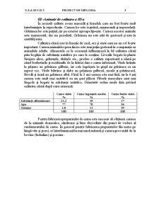 Procesul Tehnologic de Obținere a Șuncii - Pagina 3