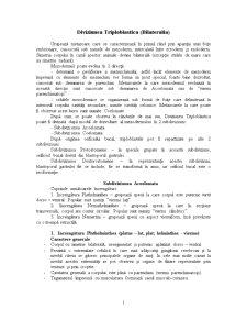 Diviziunea Triploblastica - Pagina 1