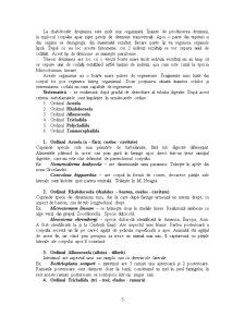 Diviziunea Triploblastica - Pagina 5