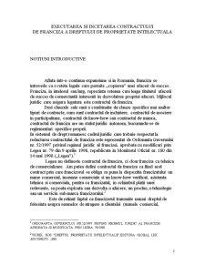 Executarea si Incetarea Contractului de Franciza a Dreptului de Proprietate Intelectuala - Pagina 2
