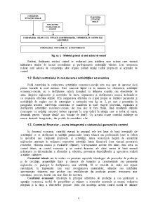 Control Financiar și Expertize Contabile Judiciare - Pagina 4